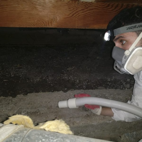 Insulation basic cleaning 2